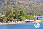 Marathonas Aegina | Greece | Photo 1 - Photo GreeceGuide.co.uk
