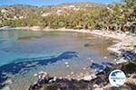 Aeginitissa | Aegina | Greece  Photo 18 - Photo GreeceGuide.co.uk
