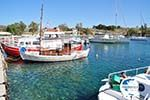 Perdika | Aegina | Greece  Photo 6 - Photo GreeceGuide.co.uk
