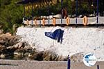 Aponissos | Angistri (Agkistri) - Saronic Gulf Islands - Greece | Photo 5 - Photo GreeceGuide.co.uk