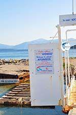 Aponissos | Angistri (Agkistri) - Saronic Gulf Islands - Greece | Photo 9 - Photo GreeceGuide.co.uk