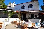 Terras Agistri Club | Angistri (Agkistri) - Saronic Gulf Islands - Greece | Photo 1 - Photo GreeceGuide.co.uk