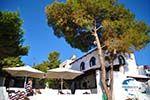 Terras Agistri Club | Angistri (Agkistri) - Saronic Gulf Islands - Greece | Photo 3 - Photo GreeceGuide.co.uk