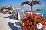 Skala | Angistri (Agkistri) - Saronic Gulf Islands - Greece | Photo 6 - Photo GreeceGuide.co.uk