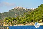 Alonissos town (Chora) | Sporades | Greece  Photo 4 - Photo GreeceGuide.co.uk