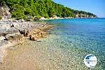 Milia Alonissos | Sporades | Greece  Photo 5 - Photo GreeceGuide.co.uk