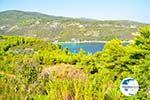 Tzortzi | Alonissos Sporades | Greece  Photo 1 - Photo GreeceGuide.co.uk