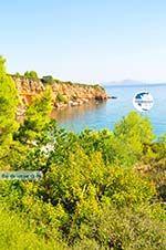 Kokkinokastro | Alonissos Sporades | Greece  Photo 6 - Photo GreeceGuide.co.uk