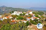 Alonissos town (Chora)   Sporades   Greece  Photo 11 - Photo GreeceGuide.co.uk