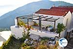 Alonissos town (Chora) | Sporades | Greece  Photo 38 - Photo GreeceGuide.co.uk