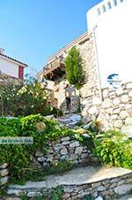 Alonissos town (Chora)   Sporades   Greece  Photo 55 - Photo GreeceGuide.co.uk