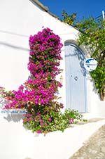 Alonissos town (Chora) | Sporades | Greece  Photo 90 - Photo GreeceGuide.co.uk