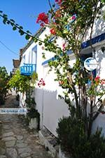Alonissos town (Chora) | Sporades | Greece  Photo 96 - Photo GreeceGuide.co.uk