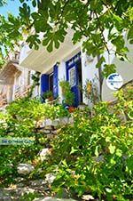 Alonissos town (Chora) | Sporades | Greece  Photo 98 - Photo GreeceGuide.co.uk