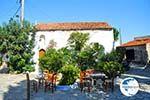 Alonissos town (Chora) | Sporades | Greece  Photo 113 - Photo GreeceGuide.co.uk
