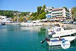 Patitiri | Alonissos Sporades | Greece  Photo 17 - Photo GreeceGuide.co.uk