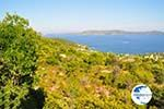 Steni Vala | Alonissos Sporades | Greece  Photo 3 - Photo GreeceGuide.co.uk