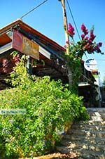 Steni Vala | Alonissos Sporades | Greece  Photo 17 - Photo GreeceGuide.co.uk