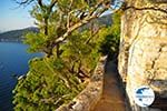 Agioi Anargiri monastery | Alonissos Sporades | Greece  Photo 8 - Photo GreeceGuide.co.uk