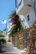 Tholaria Amorgos - Island of Amorgos - Cyclades Greece Photo 285 - Photo GreeceGuide.co.uk