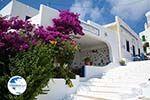 Tholaria Amorgos - Island of Amorgos - Cyclades Greece Photo 289 - Photo GreeceGuide.co.uk