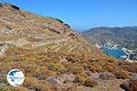 Minoa Katapola Amorgos - Island of Amorgos - Cyclades Photo 436 - Photo GreeceGuide.co.uk