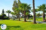 Hotel Golden Coast Nea Makri | Attica - Central Greece | Greece  Photo 2 - Photo GreeceGuide.co.uk