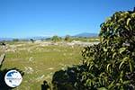 Ancient Pella | Macedonia Greece | Photo 17 - Photo GreeceGuide.co.uk