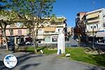 Giannitsa | Pella Macedonia | Greece Photo 1 - Photo GreeceGuide.co.uk