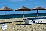 Beaches Pieria | Macedonia Photo 12 - Photo GreeceGuide.co.uk