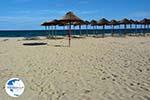 Beaches Pieria | Macedonia Photo 21 - Photo GreeceGuide.co.uk