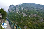 Nationaal Park of Olympus near Litochoro | Pieria Macedonia | Photo 8 - Photo GreeceGuide.co.uk