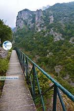 Nationaal Park of Olympus near Litochoro | Pieria Macedonia | Photo 9 - Photo GreeceGuide.co.uk