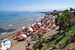 Starbeach Hersonissos - Heraklion Prefecture - Crete photo 73 - Photo GreeceGuide.co.uk