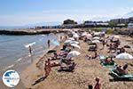 beach near Starbeach and Meltemi - Hersonissos - Heraklion Prefecture Crete - Photo GreeceGuide.co.uk