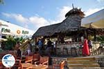 Bar StarBeach Chersonissos (Hersonissos) - Photo GreeceGuide.co.uk