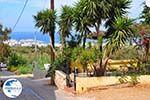 Koutouloufari Crete (Crete) Photo 22 - Photo GreeceGuide.co.uk