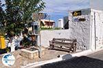 Piskopiano Crete (Crete) Photo 10 - Photo GreeceGuide.co.uk