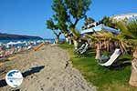 Agia Marina Crete - Chania Prefecture - Photo 12 - Photo GreeceGuide.co.uk