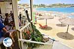 Agia Pelagia Crete - Heraklion Prefecture - Photo 3 - Photo GreeceGuide.co.uk