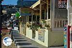 Agia Pelagia Crete - Heraklion Prefecture - Photo 28 - Photo GreeceGuide.co.uk