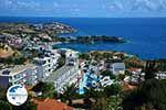 Agia Pelagia Crete - Heraklion Prefecture - Photo 57 - Photo GreeceGuide.co.uk