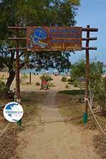 Agioi Apostoli Crete - Chania Prefecture - Photo 48 - Photo GreeceGuide.co.uk