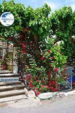 Elos Crete - Chania Prefecture - Photo 3 - Photo GreeceGuide.co.uk