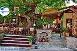 Elos Crete - Chania Prefecture - Photo 10 - Photo GreeceGuide.co.uk