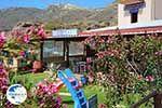 Falasarna Crete - Chania Prefecture - Photo 31 - Photo GreeceGuide.co.uk