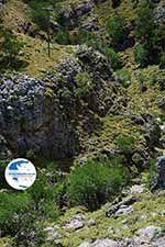 Imbros gorge Crete - Chania Prefecture - Photo 7 - Photo GreeceGuide.co.uk