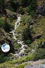 Imbros gorge Crete - Chania Prefecture - Photo 11 - Photo GreeceGuide.co.uk