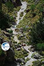 Imbros gorge Crete - Chania Prefecture - Photo 13 - Photo GreeceGuide.co.uk