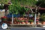 Kandanos Crete - Chania Prefecture - Photo 8 - Photo GreeceGuide.co.uk
